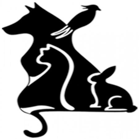 ارائه خدمات درمانی تخصصی به حیوانات خانگی(پرندگان، جوندگان، سگ و گربه، خرگوش) جراحی اصلاح و شستشو پت شاپ